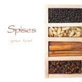 Scatola di legno con le spezie - cannella, chiodi di garofano, pepe nero e carta Immagini Stock Libere da Diritti