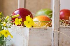 Scatola di legno d'annata bianca con le mele gialle rosse, fiore del campo, canestro con i frutti, giardino all'aperto Fotografie Stock