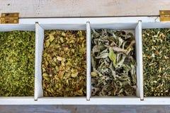 Scatola di legno di tè con le erbe secche Fotografie Stock Libere da Diritti