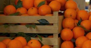 Scatola di di legno le arance stock footage