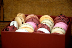 Scatola di Macarons Fotografie Stock