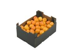 Scatola di mandarini Fotografia Stock Libera da Diritti