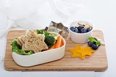 Scatola di pranzo con il panino e l'insalata Fotografia Stock