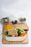 Scatola di pranzo con il panino e l'insalata Fotografia Stock Libera da Diritti