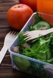 Scatola di pranzo con insalata, la mela, il mandarino ed il succo Fotografia Stock Libera da Diritti