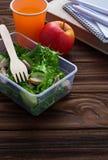 Scatola di pranzo con insalata, la mela, il mandarino ed il succo Fotografie Stock Libere da Diritti