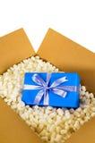 Scatola di spedizione del cartone, regalo blu di sorpresa dentro, pezzi d'imballaggio del polistirolo, verticali Fotografie Stock