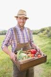 Scatola di trasporto dell'agricoltore felice di veg Fotografie Stock