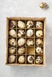 Scatola di uova di quaglia Fotografia Stock Libera da Diritti