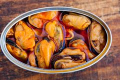 Scatola metallica delle cozze messe in salamoia inscatolate Fotografie Stock Libere da Diritti