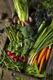 Scatola organica cruda del mercato degli agricoltori della primavera Fotografia Stock Libera da Diritti