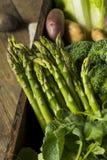 Scatola organica cruda del mercato degli agricoltori della primavera Fotografia Stock