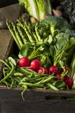 Scatola organica cruda del mercato degli agricoltori della primavera Immagine Stock