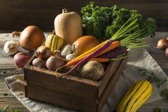 Scatola organica cruda del mercato degli agricoltori di inverno Fotografia Stock