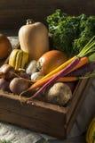 Scatola organica cruda del mercato degli agricoltori di inverno Fotografie Stock