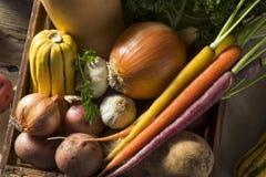 Scatola organica cruda del mercato degli agricoltori di inverno Fotografia Stock Libera da Diritti