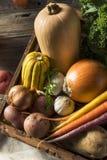 Scatola organica cruda del mercato degli agricoltori di inverno Fotografie Stock Libere da Diritti
