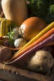 Scatola organica cruda del mercato degli agricoltori di inverno Immagini Stock Libere da Diritti