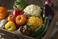 Scatola organica sana del mercato degli agricoltori di estate Fotografia Stock