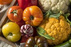 Scatola organica sana del mercato degli agricoltori di estate Immagine Stock Libera da Diritti