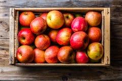 Scatola piena delle mele rosse fresche Vista superiore, spazio della copia Concetto della raccolta fotografia stock