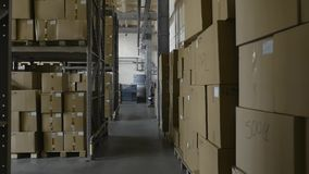 Scatole di cartone sugli scaffali dentro stoccaggio Complesso del magazzino Terminale di logistica stock footage