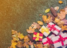 Scatole di festa con le foglie di autunno sul fondo dell'erba verde Fotografia Stock Libera da Diritti