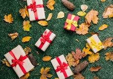 Scatole di festa con le foglie di autunno sul fondo dell'erba verde Fotografie Stock