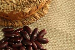 Scatter красной фасоли или фасоли почки на коричневом мешке стоковые фото