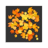 Foliage autumn backdrop Royalty Free Stock Image