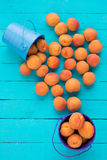 Scattered apricots from a metal bucket. Many scattered apricot from metal buckets on the wooden table royalty free stock image