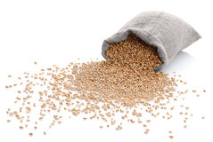 The scattered bag with wheat Royalty Free Stock Photography