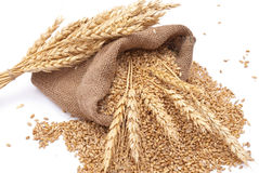 The scattered bag with wheat Stock Photography