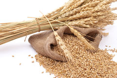 The scattered bag with wheat Stock Photos