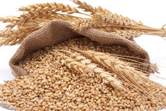 The scattered bag with wheat Royalty Free Stock Photo