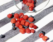 Scattered berries Royalty Free Stock Photography