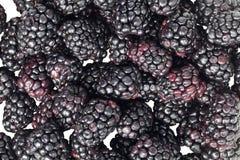 Scattered blackberries Stock Photo