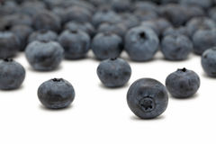 Scattered blueberry on white background Stock Photos