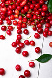 Scattered cherry from basket. Cherries in basket on white background. Healthy, summer fruit. Cherries. Close up. Royalty Free Stock Image