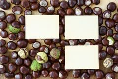 Scattered chestnuts with plywood cards. stock image