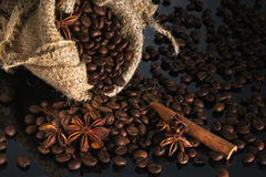The scattered coffee grains with spices Stock Photos