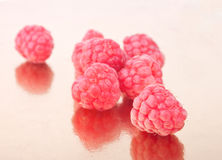 Scattered crimson raspberries Royalty Free Stock Photography
