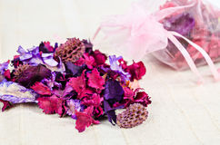Scattered dried parts of plants and flower. Scattered dried parts of plants and flower on fabric background stock image