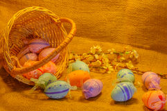 Scattered Easter Eggs, Basket and apricot flowers on sackcloth background Stock Images