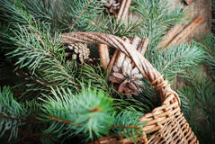 Scattered Fir Tree, Cinnamon and Pine Cones from Rural Basket. Top view Royalty Free Stock Image