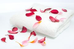 Scattered flowers petals on white towel Stock Image