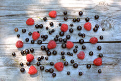 Scattered, fresh, natural blackcurrant and red raspberry on grey table - berries background. On wooden texture Stock Photo
