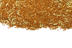 Scattered grains of millet Stock Photo