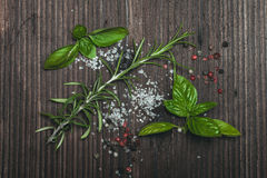 Scattered herbs and salt Stock Images