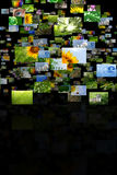 Scattered images Stock Images